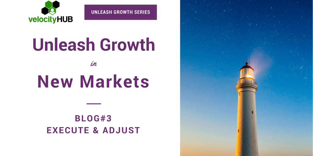 """Grow 2X in New or Emerging Markets 